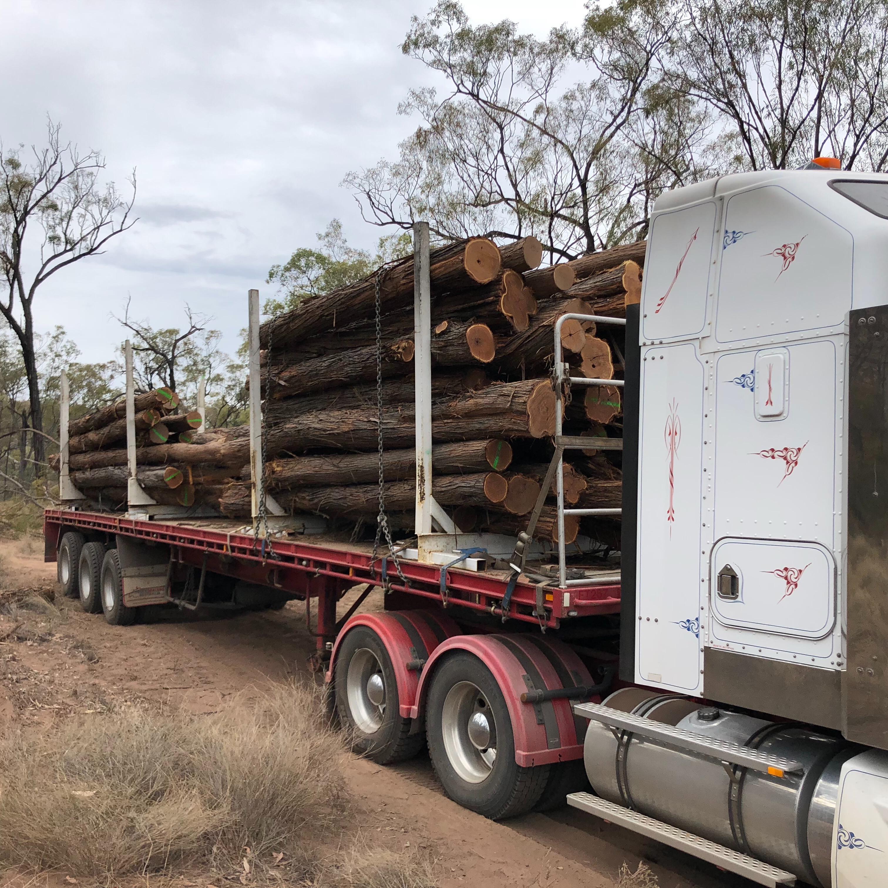 Kitson Trucking Company