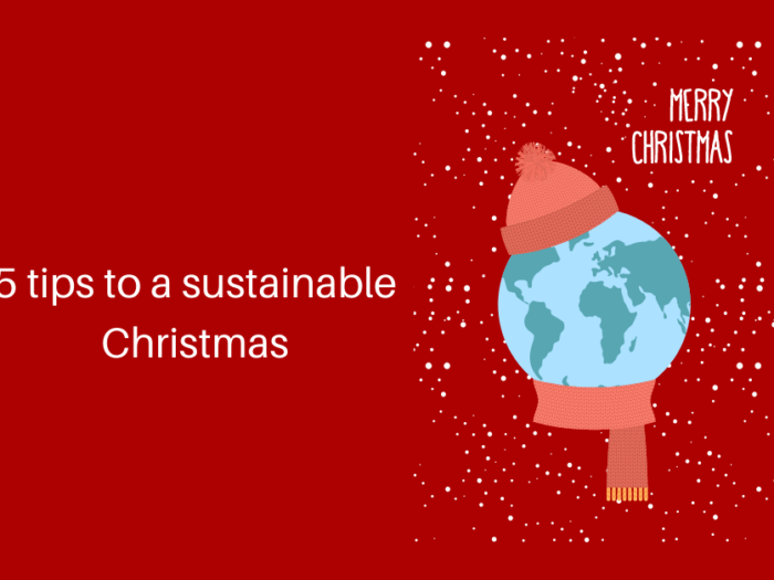 5 tips to a sustainable Christmas